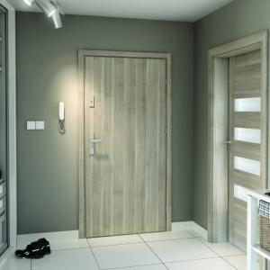 Uși de interior pentru intrare în apartament