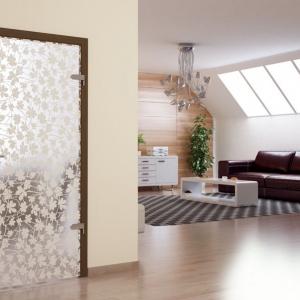 Uși de interior din sticlă