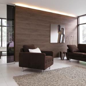 Paneluri decorative