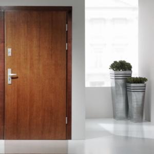 Usi pentru intrare in apartament